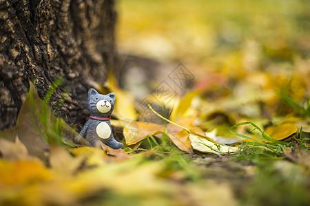 秋天的童话图片