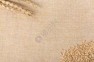 棉麻底谷物燕麦米拍摄图片