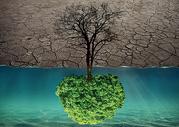环保概念图片