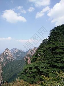 黄山—妙笔生花图片