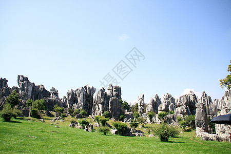 云南石林图片