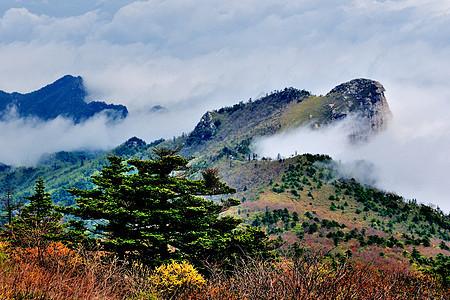 秦岭山风光图片