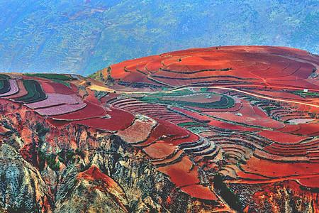 东川红土地图片
