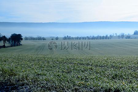雾蒙蒙的草原图片