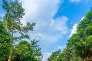 乌鲁木齐南公园天空很美多云图片
