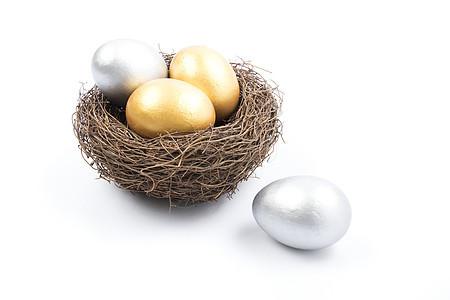 鸟巢里的蛋多角度拍摄图片