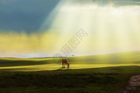 坝上草原风格图片