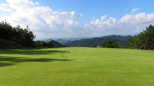 高尔夫草坪图片