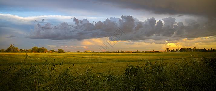 田野间的傍晚图片