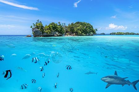 海面上的小岛图片