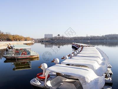 沧州人民公园的春夏秋冬图片