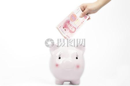 投资理财金猪储蓄罐图片