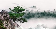 云山雾绕的大山图片