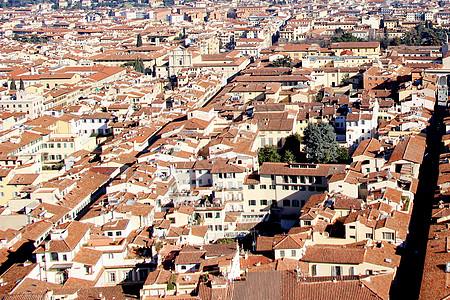 微观世界 佛罗伦萨图片