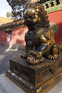 北京故宫的铜狮子图片