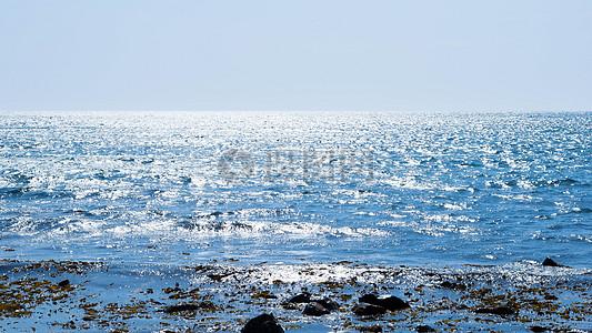 海洋手绘图片_海洋手绘素材_海洋手绘高清图片_摄图网