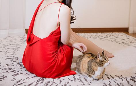 穿红色剪裁礼服女人与猫图片