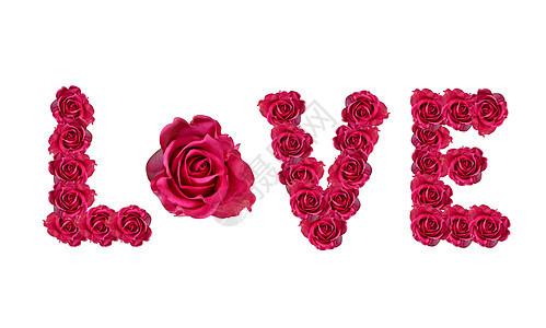 情人节红色玫瑰背景图片