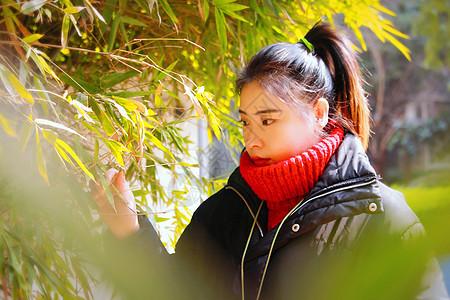 竹林美女图片