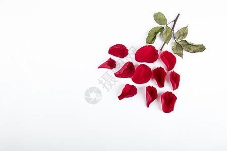 玫瑰花造型图片