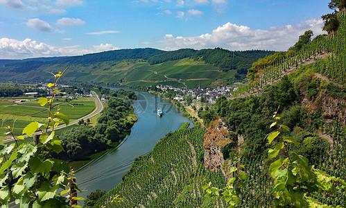 德国葡萄庄园图片