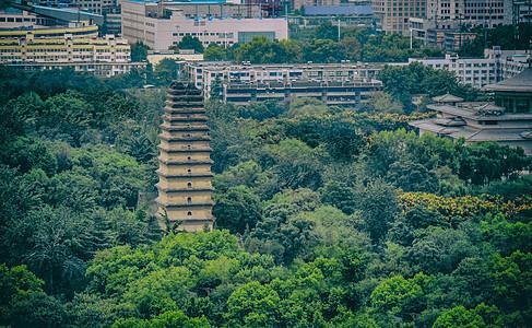 盛夏里的西安小雁塔远眺图片
