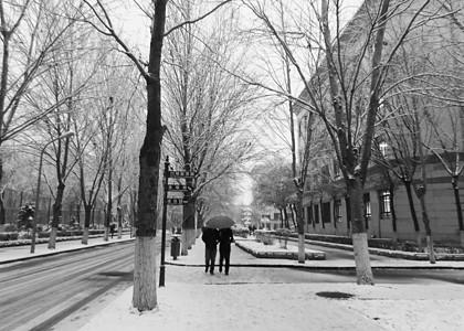 哈尔滨学院一角图片