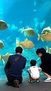 一家人在水族馆图片