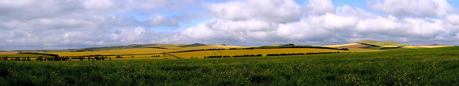 辽阔的大草原图片