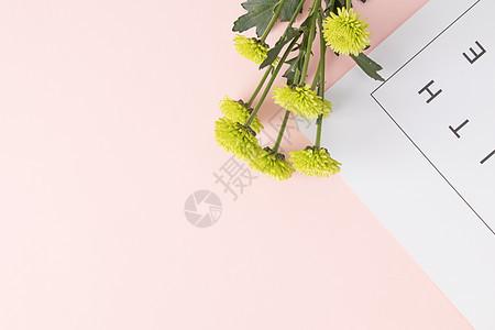小清新粉色雏菊文艺背景图片