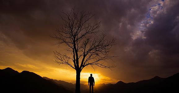枯树下的一个人图片