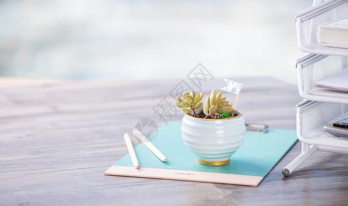 多肉植物桌面文具小清新拍摄图片