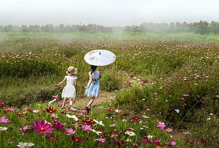 奔跑在格桑花海中的小女孩图片
