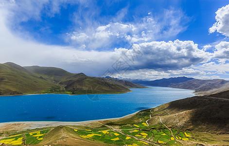 西藏羊卓雍错湖图片