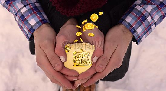 双手捧着金猪图片