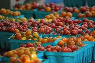 箱装西红柿图片