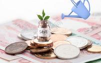 投资理财给金币灌溉图片