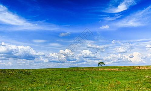 美丽的草原风光图片