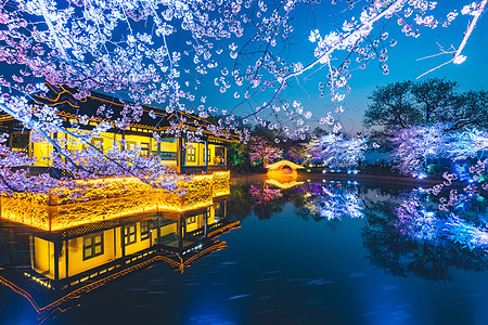 无锡鼋头渚樱花图片