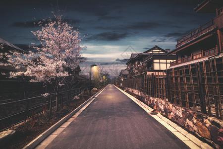 樱花小路图片