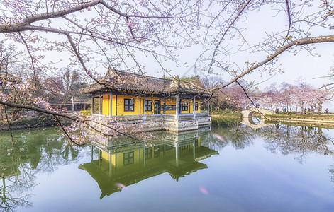 樱花与古建筑图片