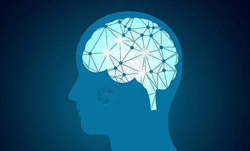 大脑分布图图片