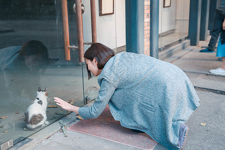 美女在跟猫玩图片