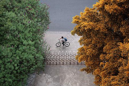骑车的人图片