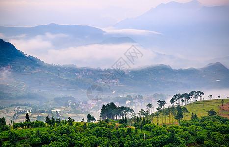 云雾里的梯田人家图片