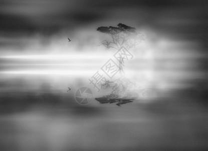 雾中鸟和树在水里的倒影图片