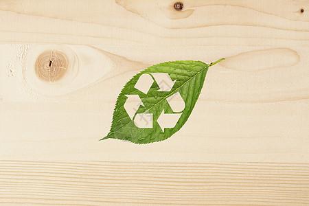 绿叶中的环保标志图片