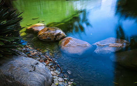 水中石图片
