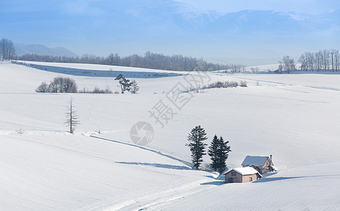 白雪中的美景图片