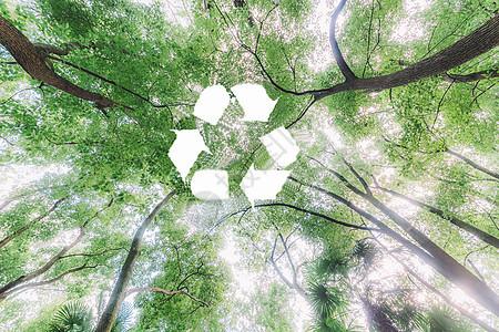 森林顶部的循环标志图片